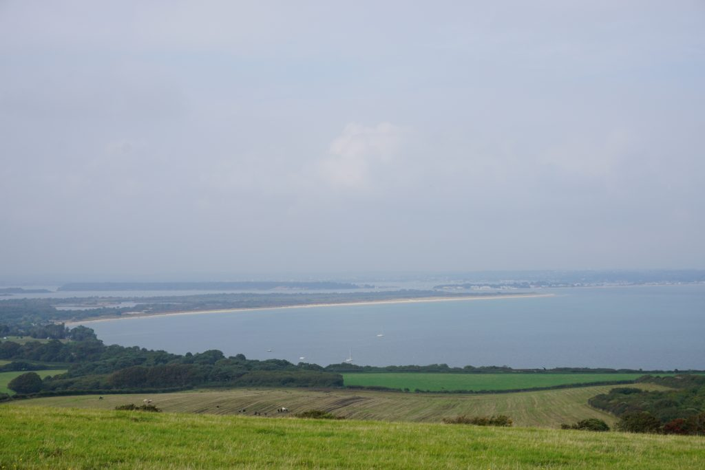from-corfe-to-swanage-via-harrys-rocks-studland