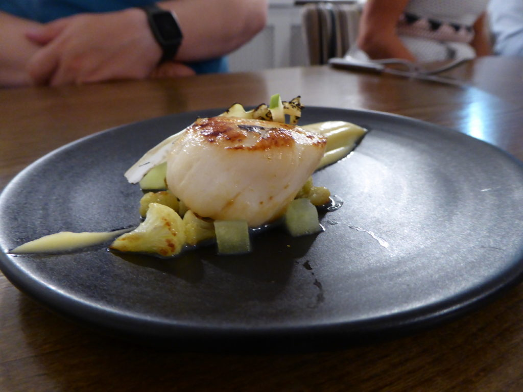 provenance-scallops