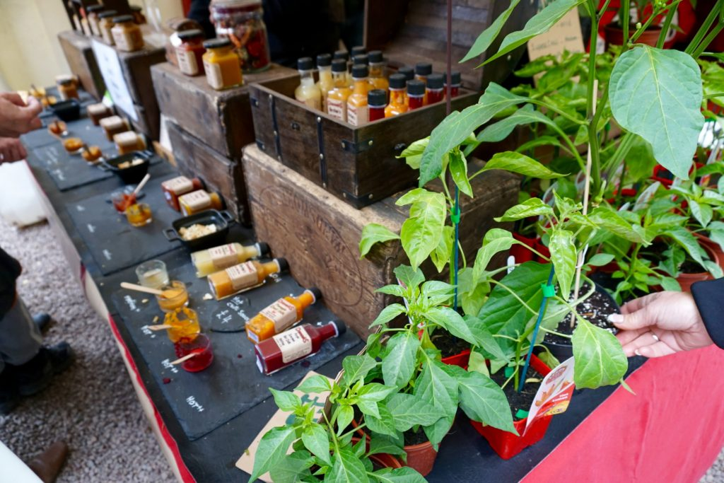 A Day Out at the Eastnor Castle Chilli Festival 2017
