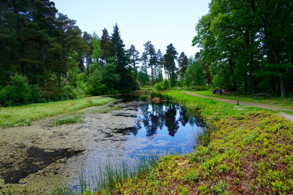 Northumberland-Cragside