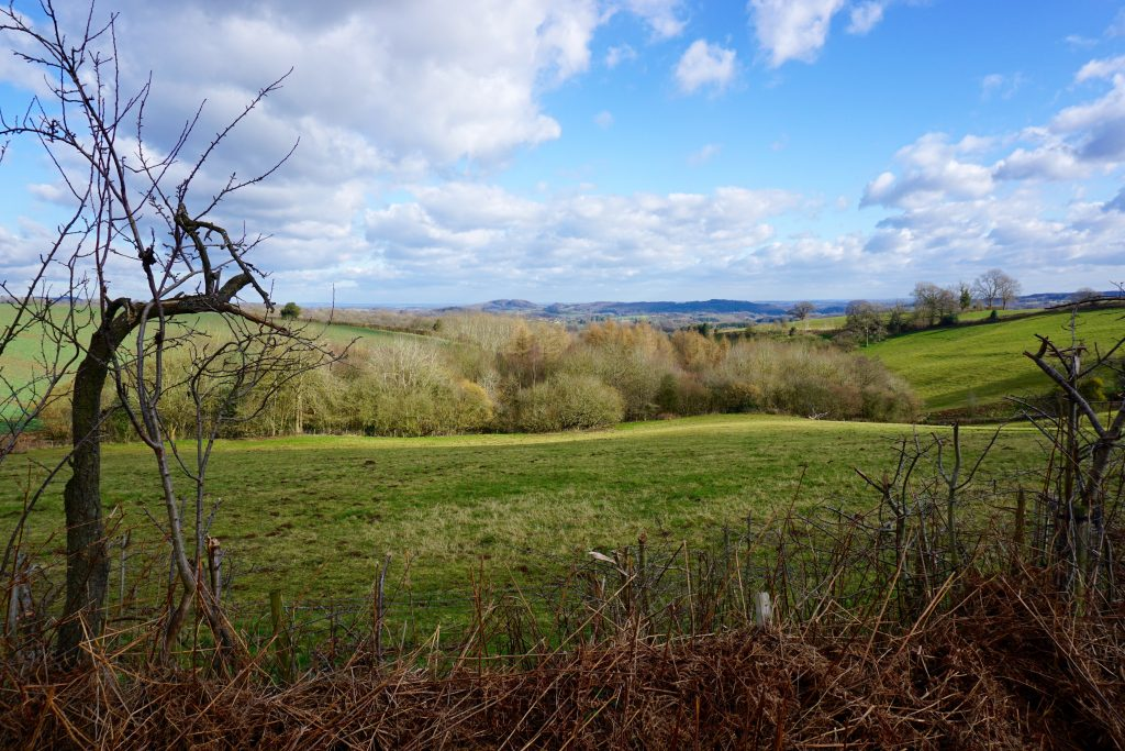 Five Ways to Get Outdoors - Panorama of Brockhampton Grounds