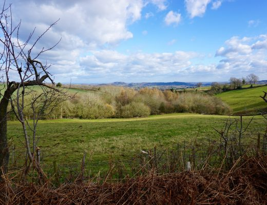 Five Ways to Get Outdoors - Panorama of Brockhampton Grounds