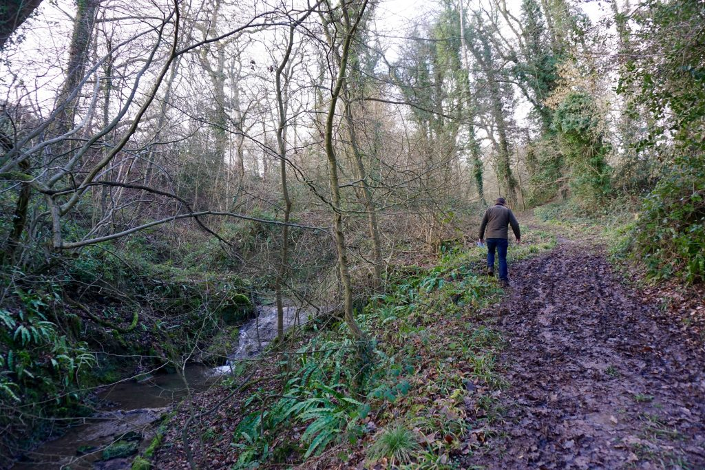 Five Ways to Get Outdoors - Walking Around Brockhampton Estate